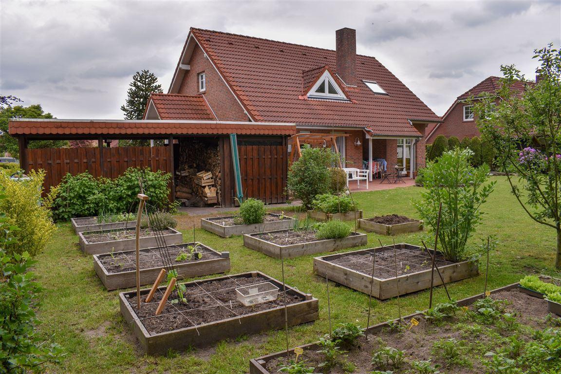 Garten (Frühjahr 2020)